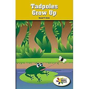 Tadpole Grows Up (Rosen Real Readers: Stem and Steam Collection)