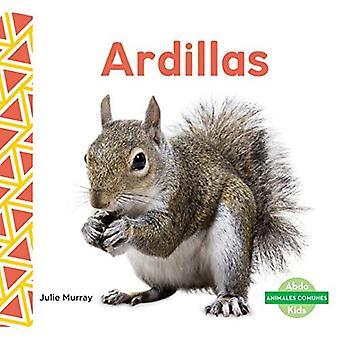 Ardillas (Squirrels) (Animales Comunes (Everyday Animals ))