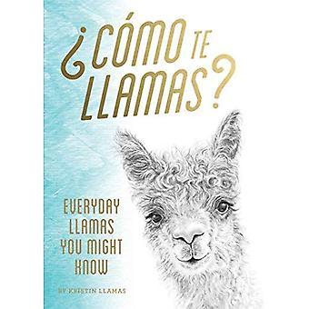 Como te Llamas: Everyday Llamas You Might Know