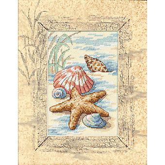 Matted Accents Shells In The Sand Counted Cross Stitch Kit 8