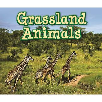 Grassland Animals (Animals in Their Habitats) (Paperback) by Smith Sian