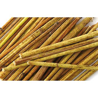 Hugro Topinambur Sticks (Small animals , Hygiene and Cleaning , Treats , Dental Care)