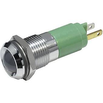 Luz del indicador verde 230 V AC