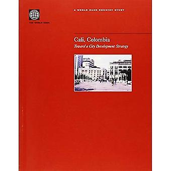 Cali, Colombia: naar een strategie voor de ontwikkeling van stad