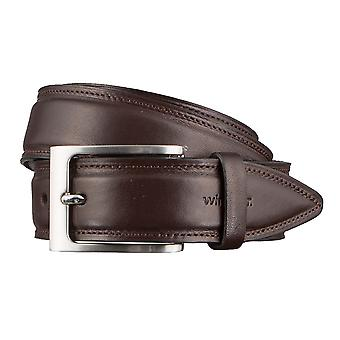 Windsor. Belts men's belts leather belt Brown 3167