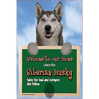 Skotske Collectables Siberian Husky 3D bly bøjle væg Plaque