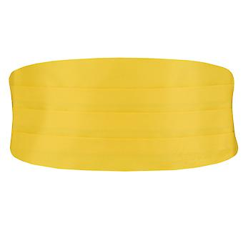 Dobell Boys Yellow Cummerbund Adjustable Waist Tuxedo Wedding Accessory