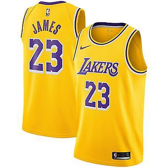 Nike Nba Los Angeles Lakers Lebron James Youth Swingman Jersey - Icon Edition