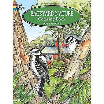 Livre à colorier The Backyard Nature