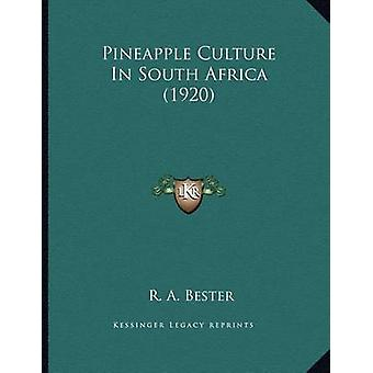 Pineapple Culture in South Africa (1920) by R A Bester - 978116392468