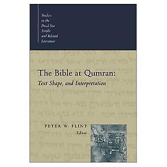 De Bijbel bij Qumran: tekst, vorm en interpretatie (studies in de Dead Sea Scrolls & gerelateerde literatuur)