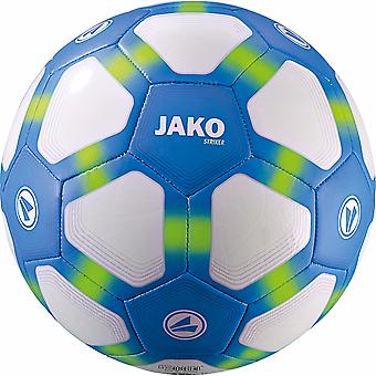 James youth ball striker