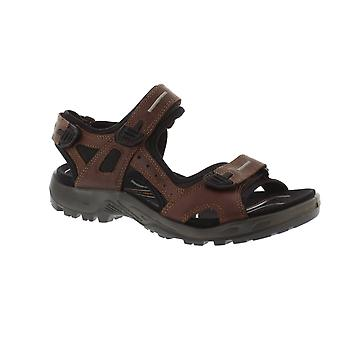 Ecco 822094 Offroad - 01280 Brandy Pull Up (Brown) Mens Sandals