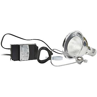 Ica Portalamp for Sunlight Halog100W (Reptiles , Lighting , Lamps)