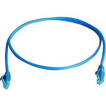 RJ45 Networks Cable CAT 5e U/UTP 5 m Sky blue Flame-retardant, Halogen-free Telegärtner