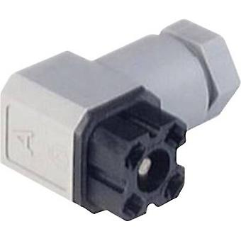 Hirschmann 935 980-003 G 30 W 3 F Mains Voltage Connector Grey Number of pins:3 + PE