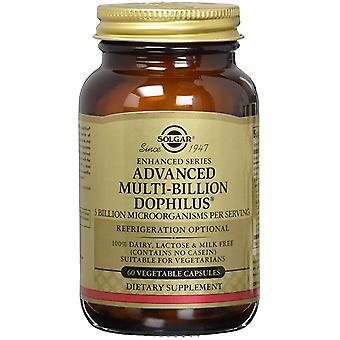 Solgar Advanced Multi-Billion Dophilus Vegetable Capsules 60 Ct