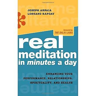 Riktiga Meditation i minuter om dagen: optimera din prestation, relationer, andlighet och hälsa