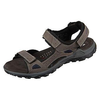Ara Ericsen 113510135   men shoes