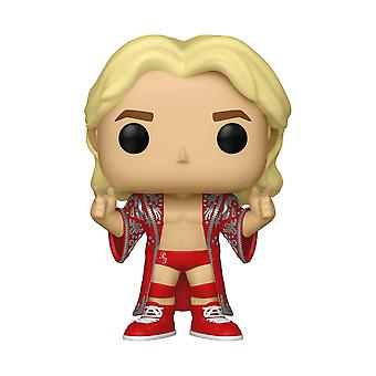 Funko POP! Vinyl 38067 WWE: Ric Flair Collectible Figure,