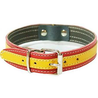 Petpall Ronzal Cuero España 1'8 X120 Cm (Dogs , Collars, Leads and Harnesses , Leads)