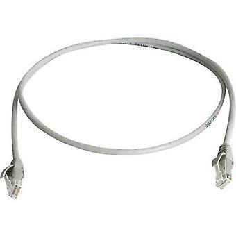 Telegärtner RJ45 Networks Cable CAT 6 U/UTP 2 m Grey Flame-retardant, Halogen-free