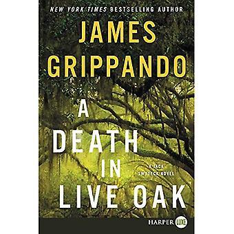 A Death In Live Oak [Large Print] (Jack Swyteck)