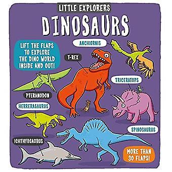 Little Explorers: Dinosaurs (Little Explorers)