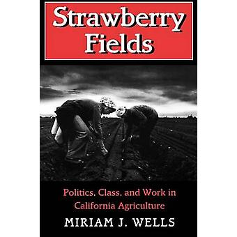 Strawberry Fields - Politics - Class and Work in California Agricultur
