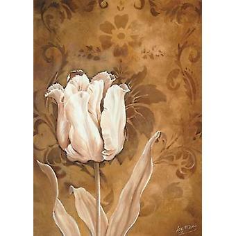 Tulip skönhet jag affisch Skriv av Isa Maas
