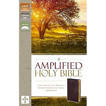 Amplified Holy Bible Bonded Leather Burgundy Indexed by Zondervan Publishing