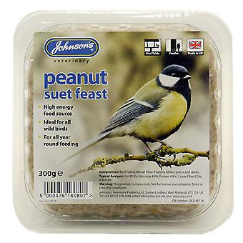 Jvp Wild Bird Suet Tray Peanut 300g (Pack of 8)