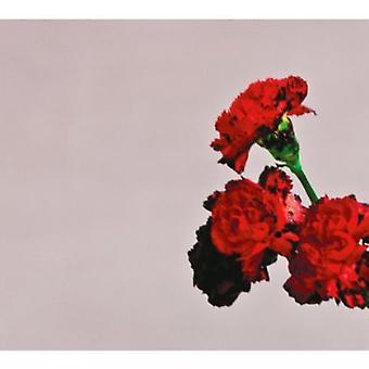John Legend - miłość w przyszłości importu USA [CD]