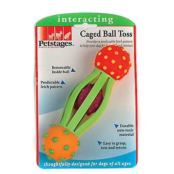 Petstages Caged Ball Toss Dog Toy
