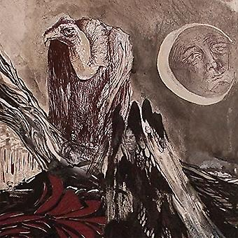 Falsk - Untitled [Vinyl] USA importerer