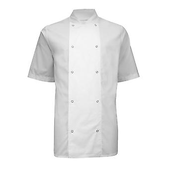 Alexandra Mens Short Sleeve Stud Chefs Jacket