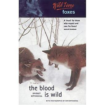 Luath Wildlives Foxes