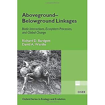 Oberirdische unterirdischer Verbindungen: Biotische Interaktionen Ökosystemprozesse und globaler Wandel