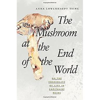 The Mushroom at the End of the World - On the Possibility of Life in C