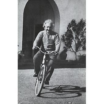 Albert Einstein - sykkel plakatutskrift plakat