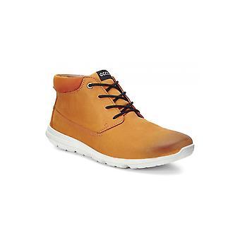 Ecco Sneaker Calgary Mid 83433459685 universal  men shoes
