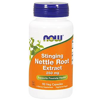 Now Foods Stinging Nettle Root Extract 250 mg 90 vcaps (Herbalist's , Supplements)
