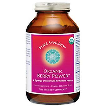The Synergy Company, Berry Power, 255g Powder