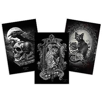 Affiche de l'alchimie mis Poe Raven, de veuve mauvaises herbes & Paracelcus