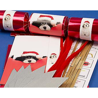 8 Red Foil Cute Christmas Puppy Make & Fill Your Own Cracker Kit