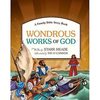 Maravilhosas obras de Deus: um livro de histórias da Bíblia da família