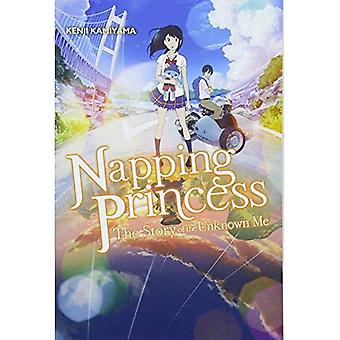 Napping Princess, Vol. 1 (light novel)