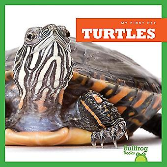 Turtles by Cari Meister - 9781620311486 Book