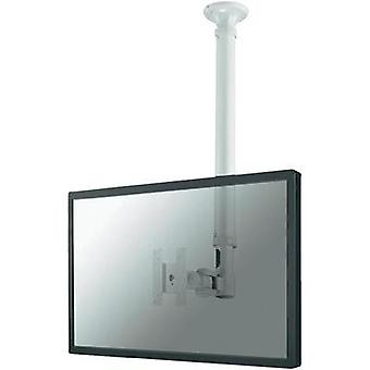 Monitor ceiling mount 25,4 cm (10) - 76,2 cm (30) Swivelling/tiltable, Swivelling NewStar Products FPMA-C100WHITE