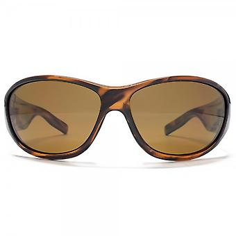 Freedom Polarised Full Chunky Wrap Sunglasses In Brown Stripe